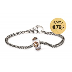 TSA17C Trollbeads Feast of joy Bracelet